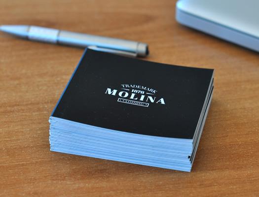 Mini Libros personalizados