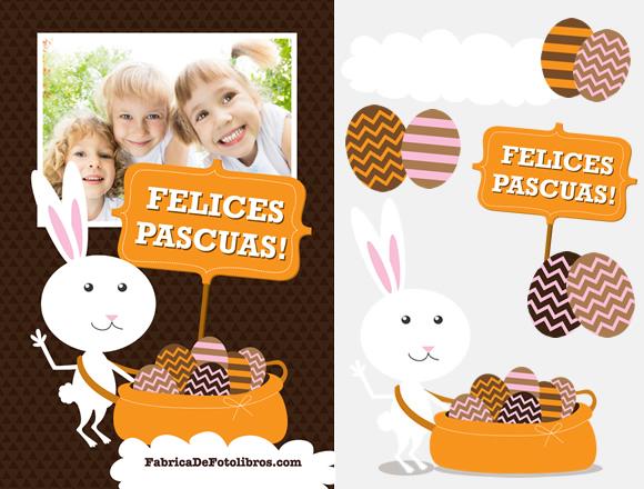 Set de fondo y elementos para postal de Plascuas - Conejo
